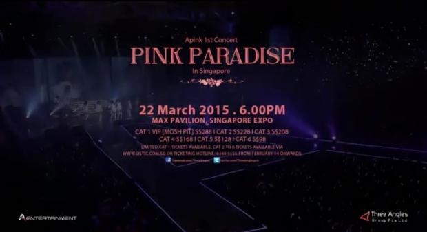 apink_pinkparadisesg